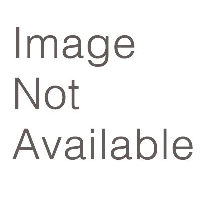 Nidek Logo 2015